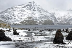 Scientists calculated the temperature of the Ice Age